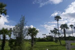 De Mandalay a un poblet llunyà - Cròniques d'un viatge