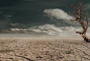 Desert_drought