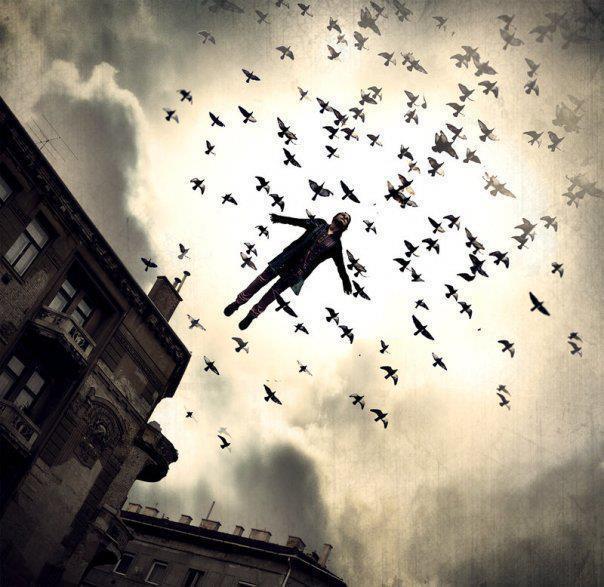 Extret de Globedia.com - El Arte de Volar