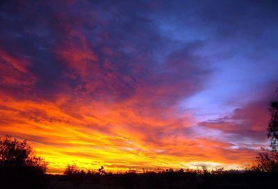 Flying_Blue_Sunrise - Còpia