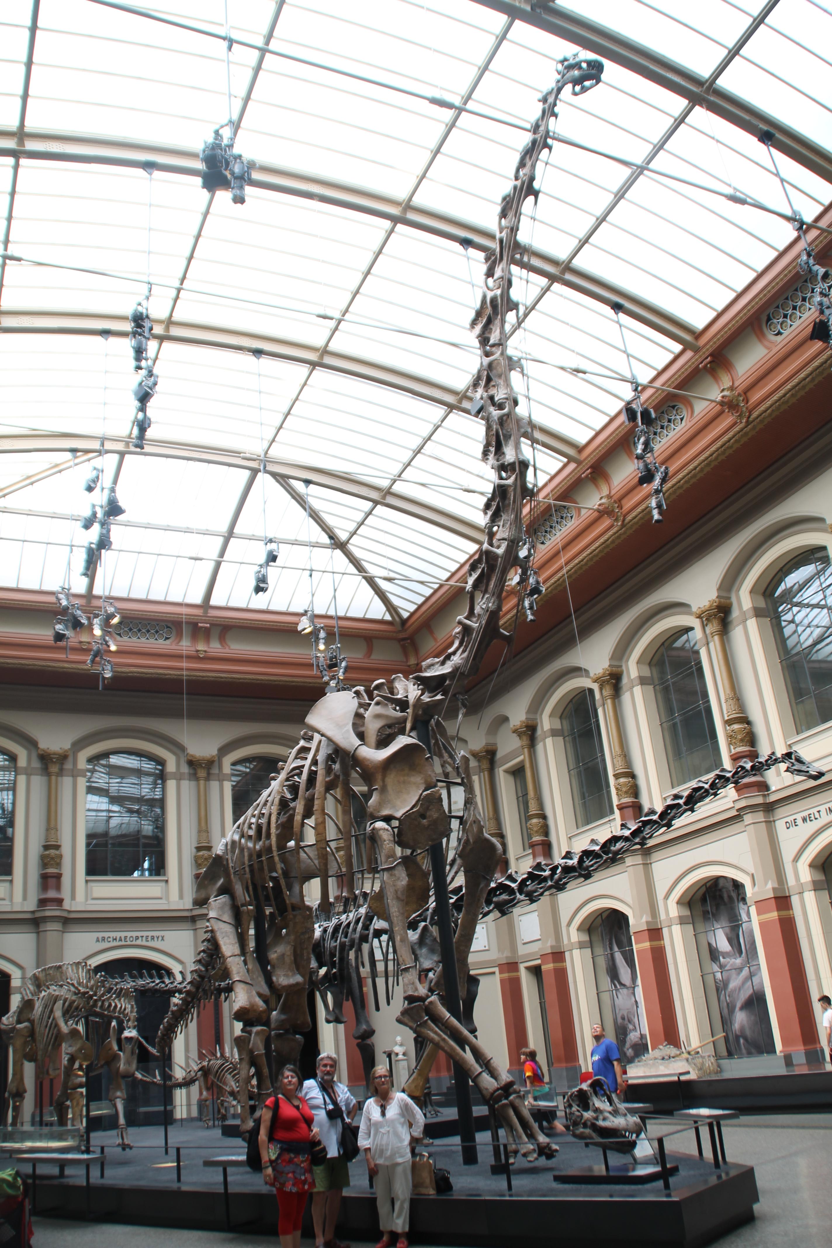 Al museo de Ciències Naturals .