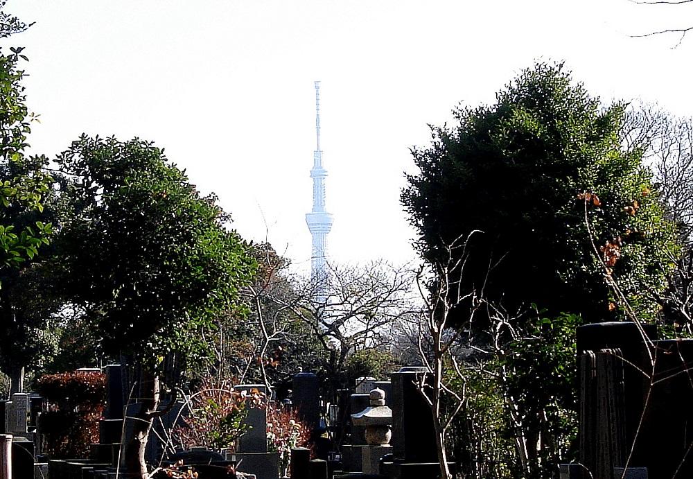 En primer terme, tombes. Al fons, l'Skay Tree de Tòquio, la torre de comunicacions més alta d'Àsia.
