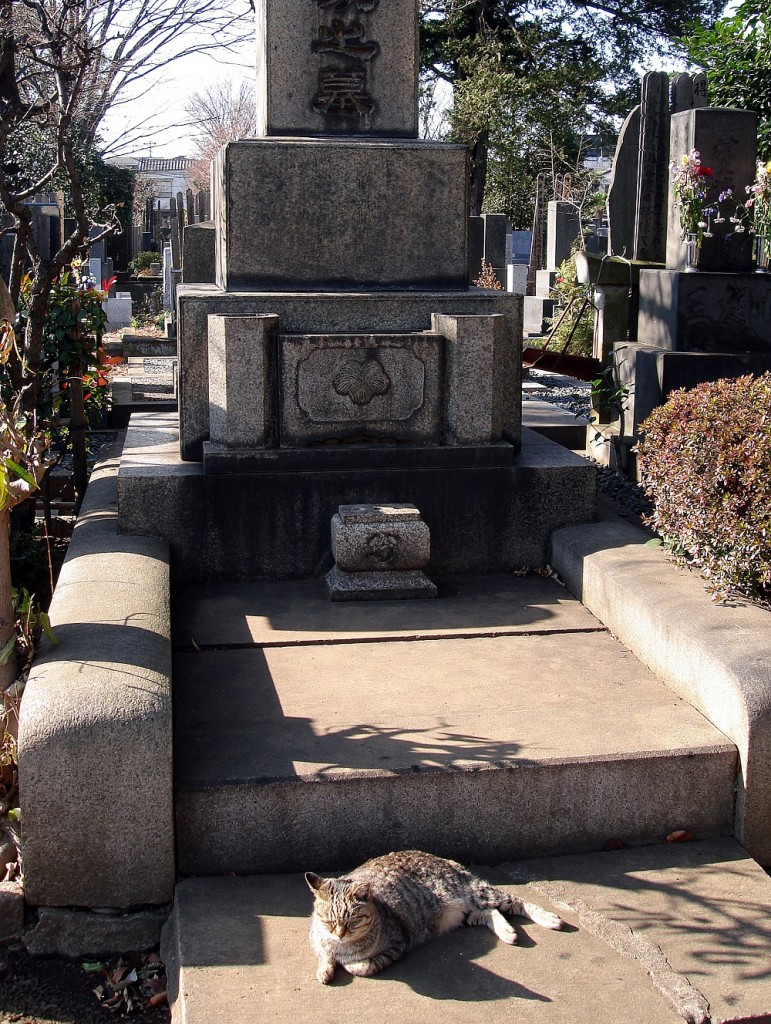 El gat vigila la tomba.