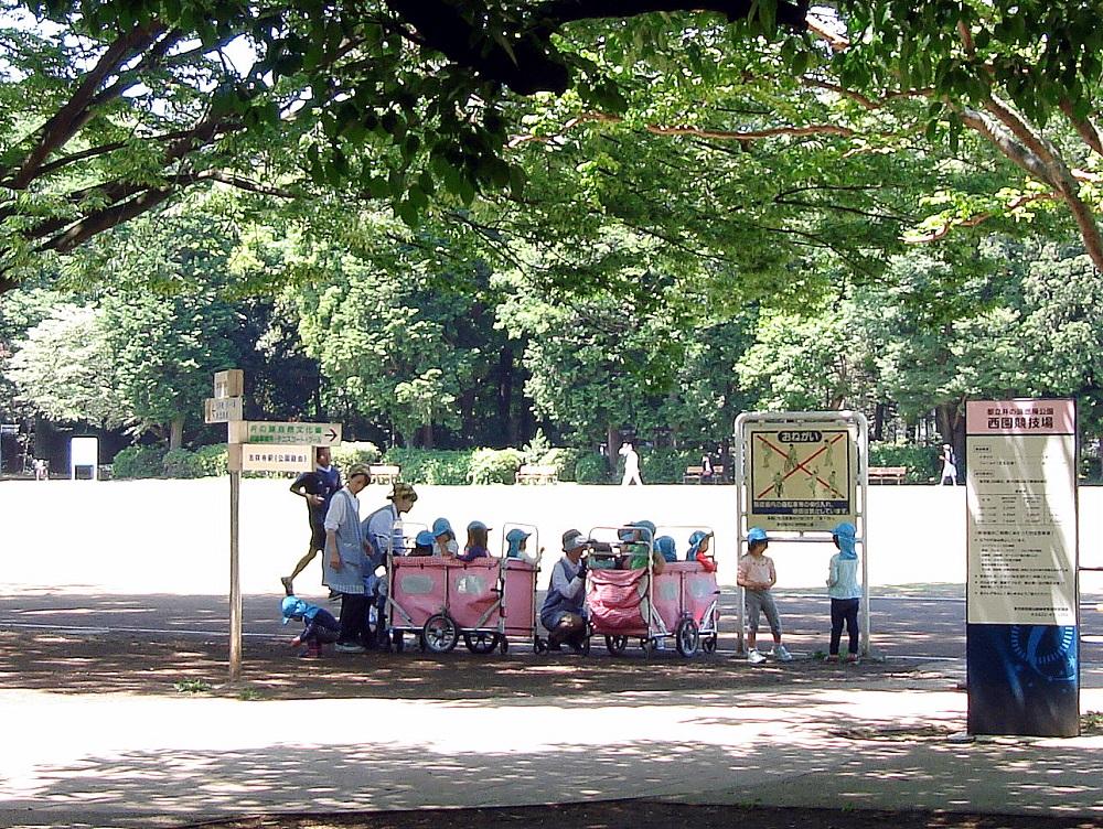 Amb carros com aquests transporten cap al parc els nens de les guarderies
