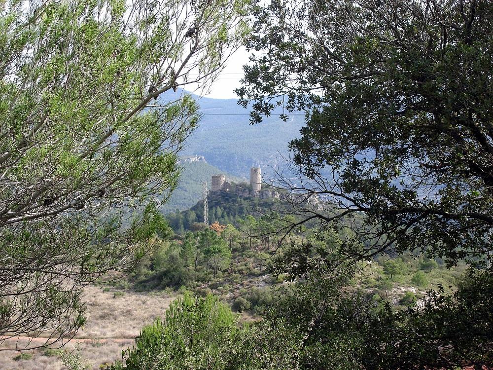 Al fons, el castell de Saburella