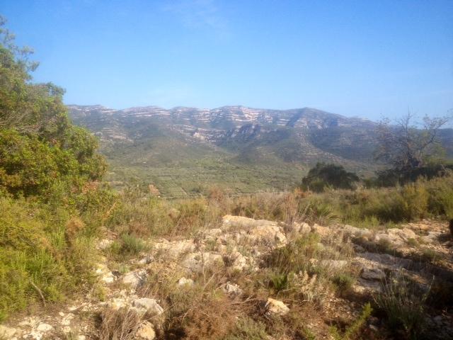 La vall de la Carbonera