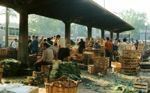 mercat del born (1 de 9) (3)