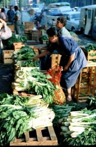 mercat del born (5 de 9) (2)