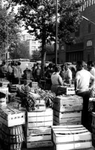 mercat del born (8 de 9) (2)