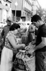 mercat del born (9 de 9) (2)