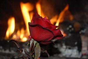 foc passio calidesa