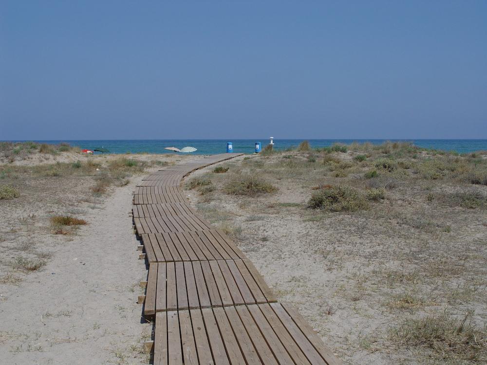 Un camí sobre les dunes