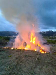 Foc al Montgó?