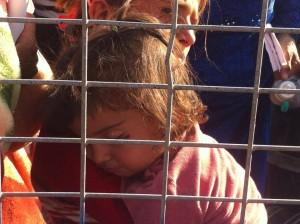 Kobane5