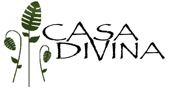 Logo Casa Divina