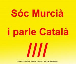 10- Soc Murcia i Parle Catala (Joanjo) 20-6-2012 -JPG