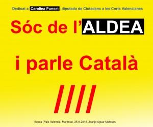 20- Soc de l'ALDEA i Parle Catala (Joanjo) 25-6-2015 -JPG